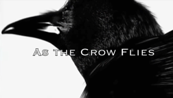 As%20The%20Crow%20Flies.mp4